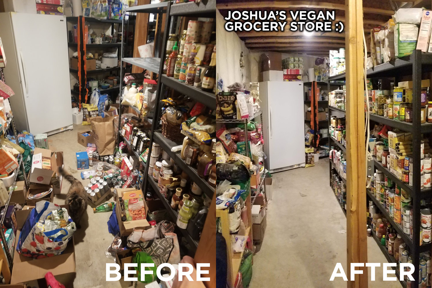 social-media-detox-organized-pantry-and-vegan-grocery-store-after-before---plant-powered-prophet